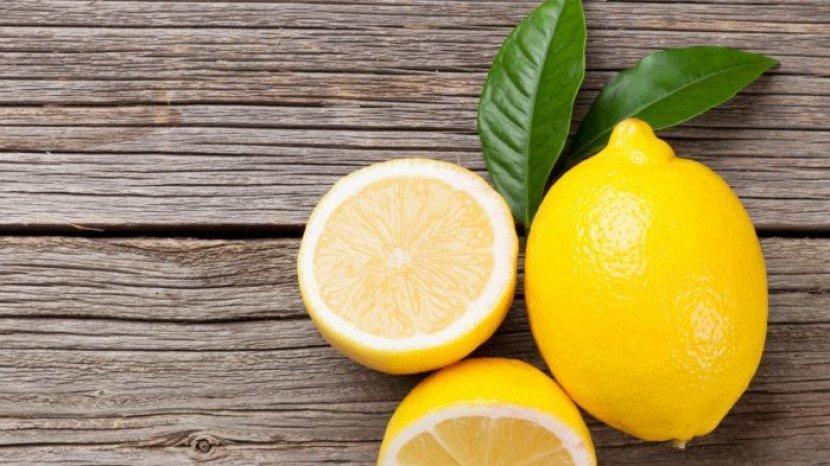 Lemon Dan Cuka Bisa Hilangkan Kutu Pada Anjing