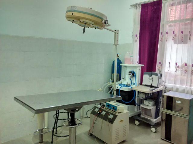 Klinik Harus Punya Standarisasi dari PDHI