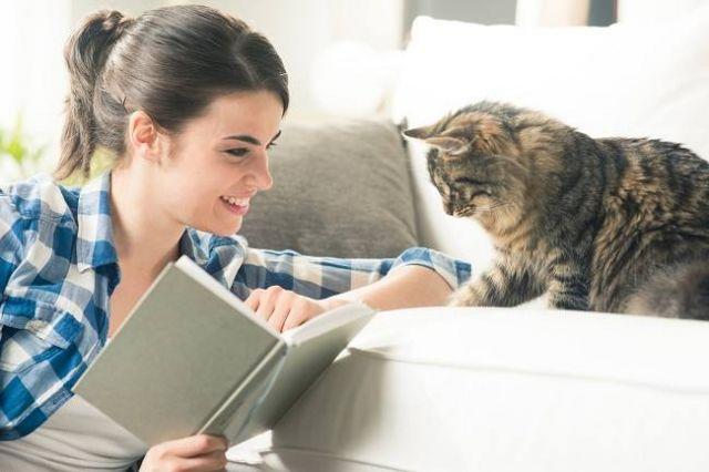 Manfaat Gigitan Cinta Kucing Bagi Perilakunya